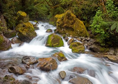 Marion Creek Rapids, Fiordland, South Island New Zealand